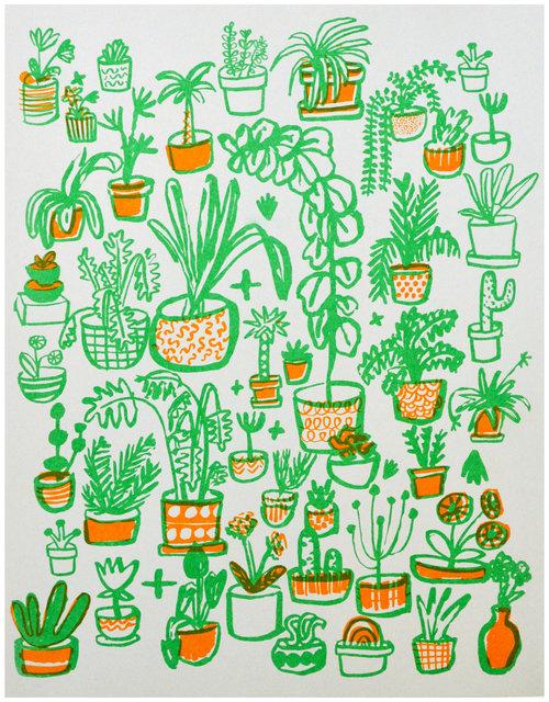 plants_grey.jpg